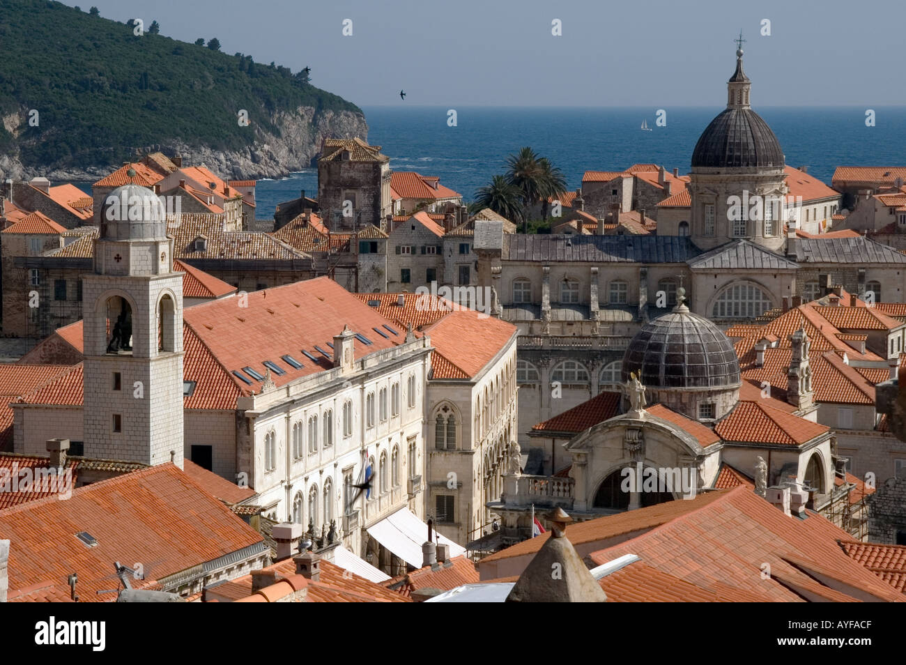 Stock Photo - The skyline of Dubrovnik Croatia showing the terracotta roofs : terracotta roofs - memphite.com