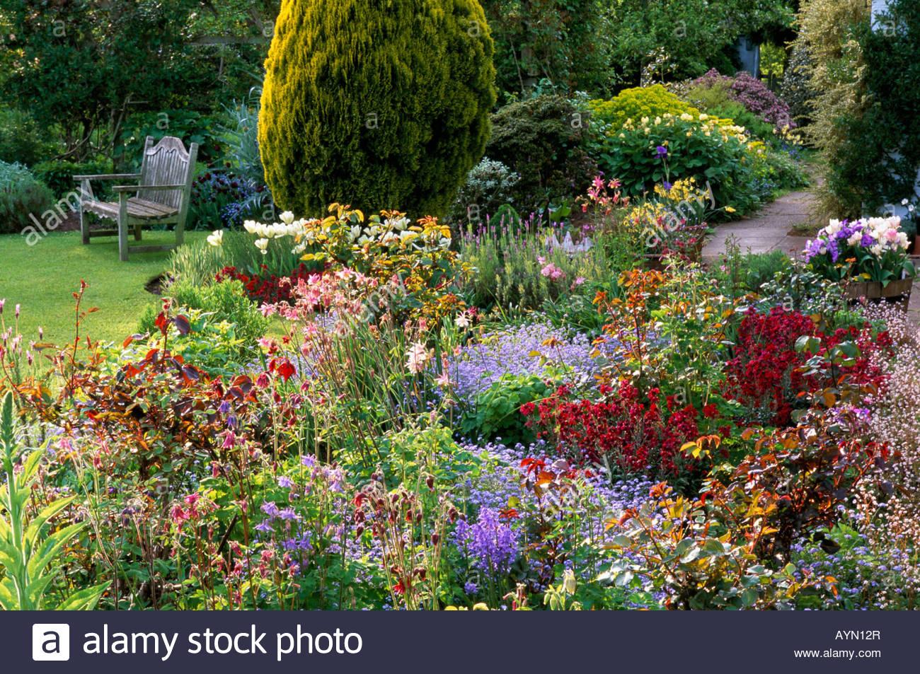 Eastgrove Cottage Garden Worcestershire Mixed Rose Border