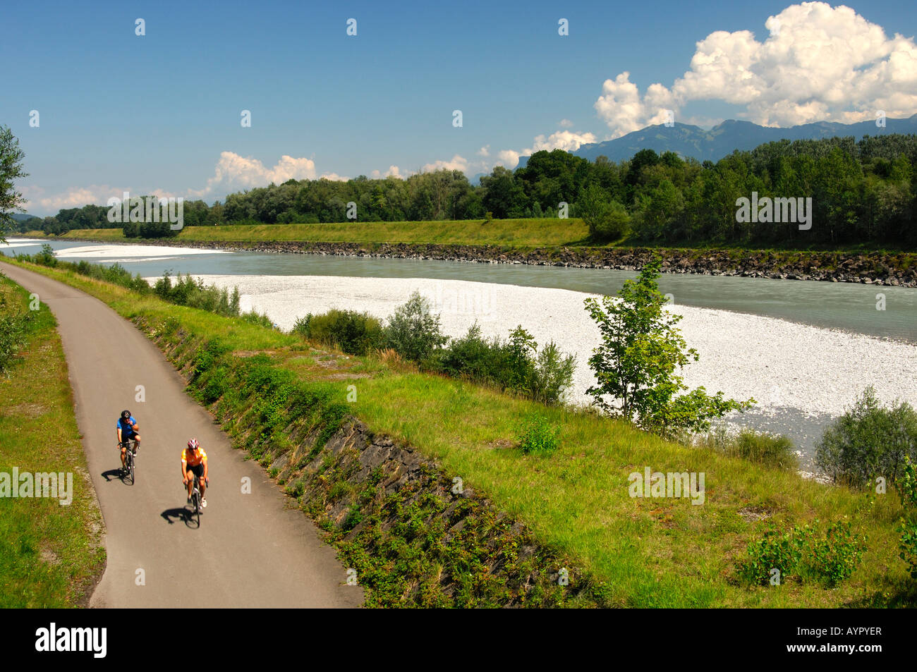 Cyclists In The Rhine River Valley View From The Left Bank Swiss - Swiss river to the rhine