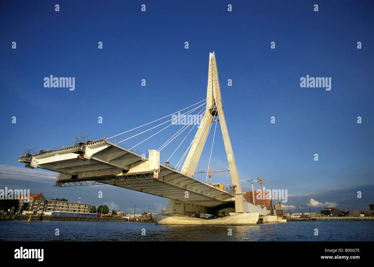 rotterdam the construction of the erasmus bridge stock
