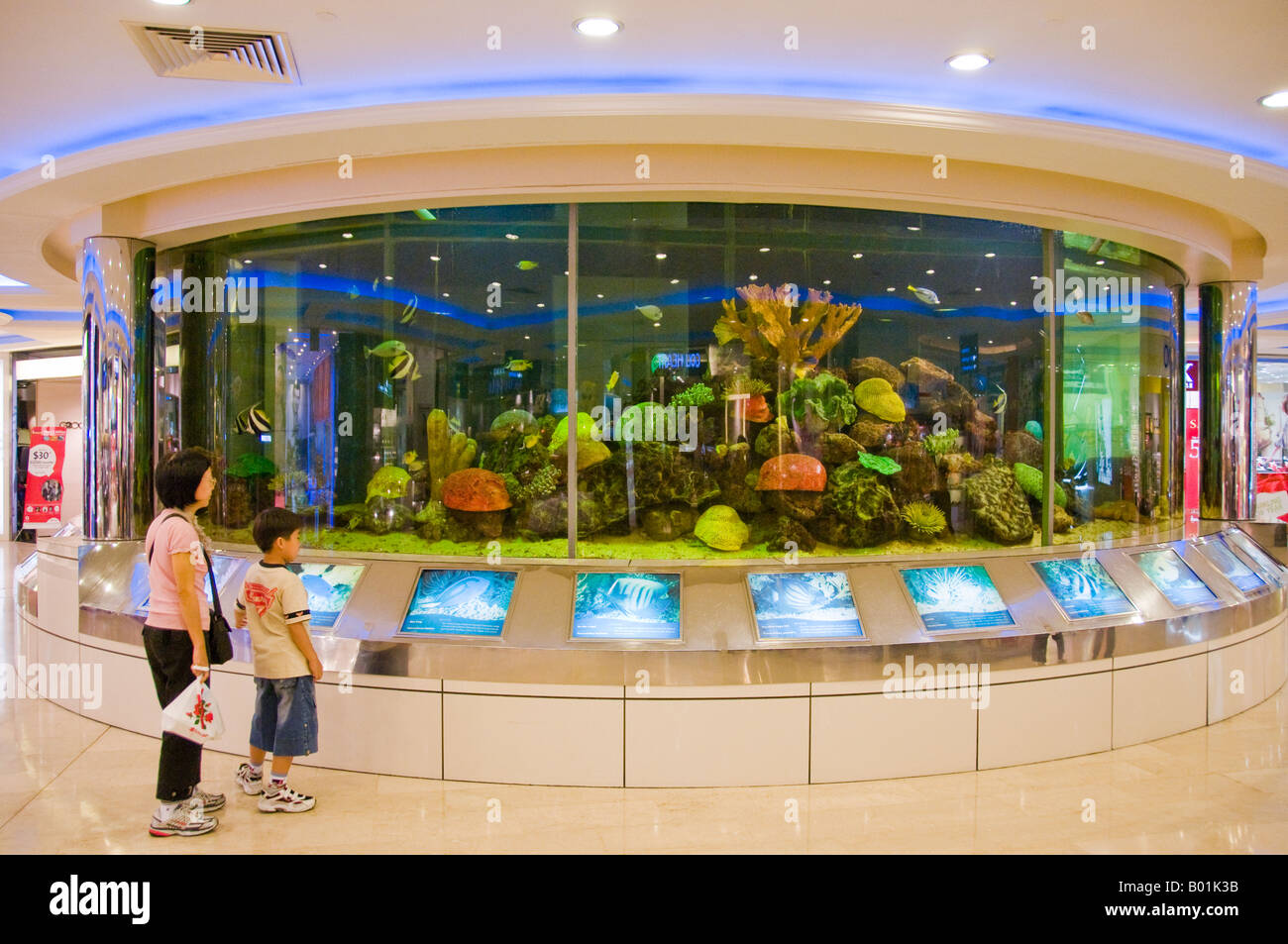 circular aquarium in interior of shopping mall in singapore stock photo royalty free image. Black Bedroom Furniture Sets. Home Design Ideas