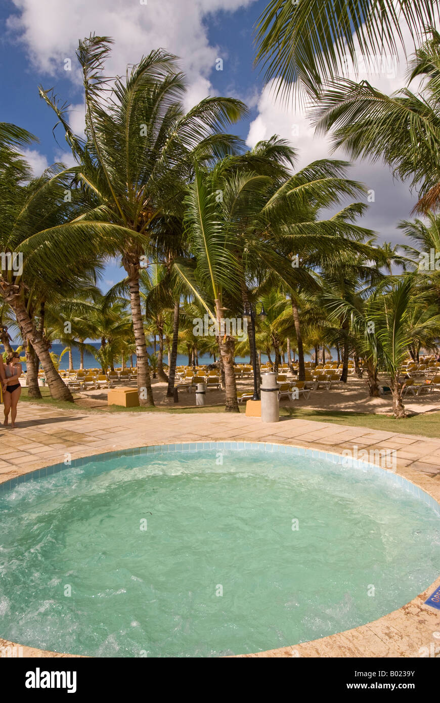 Dominican republic bayahibe small round swimming pool palm trees stock photo royalty free image - Palm beach swimming pool ...