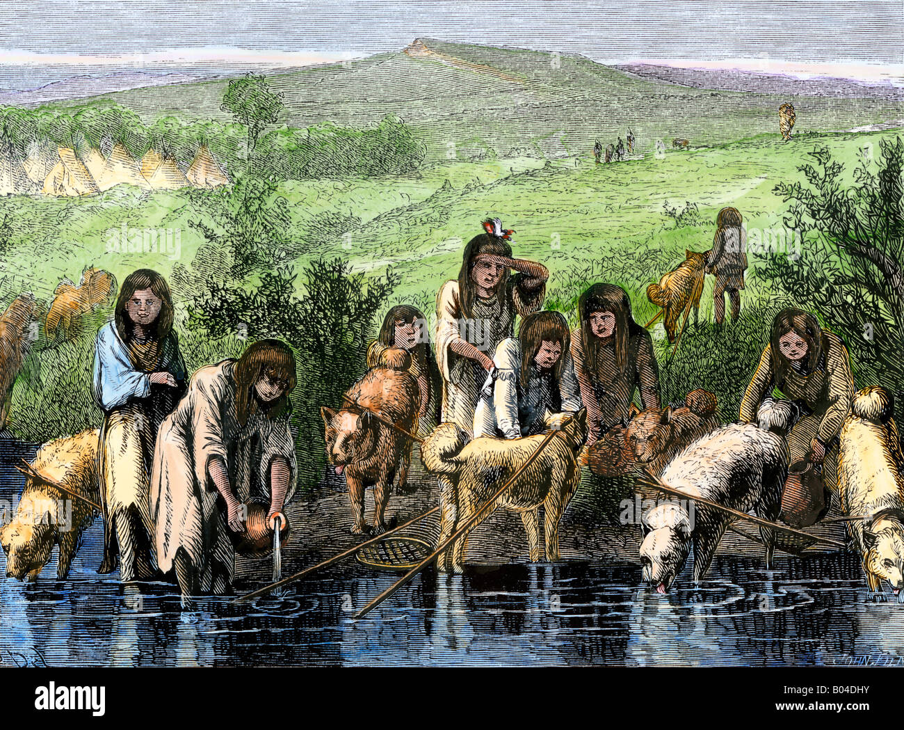 The Native Americans- Travois?