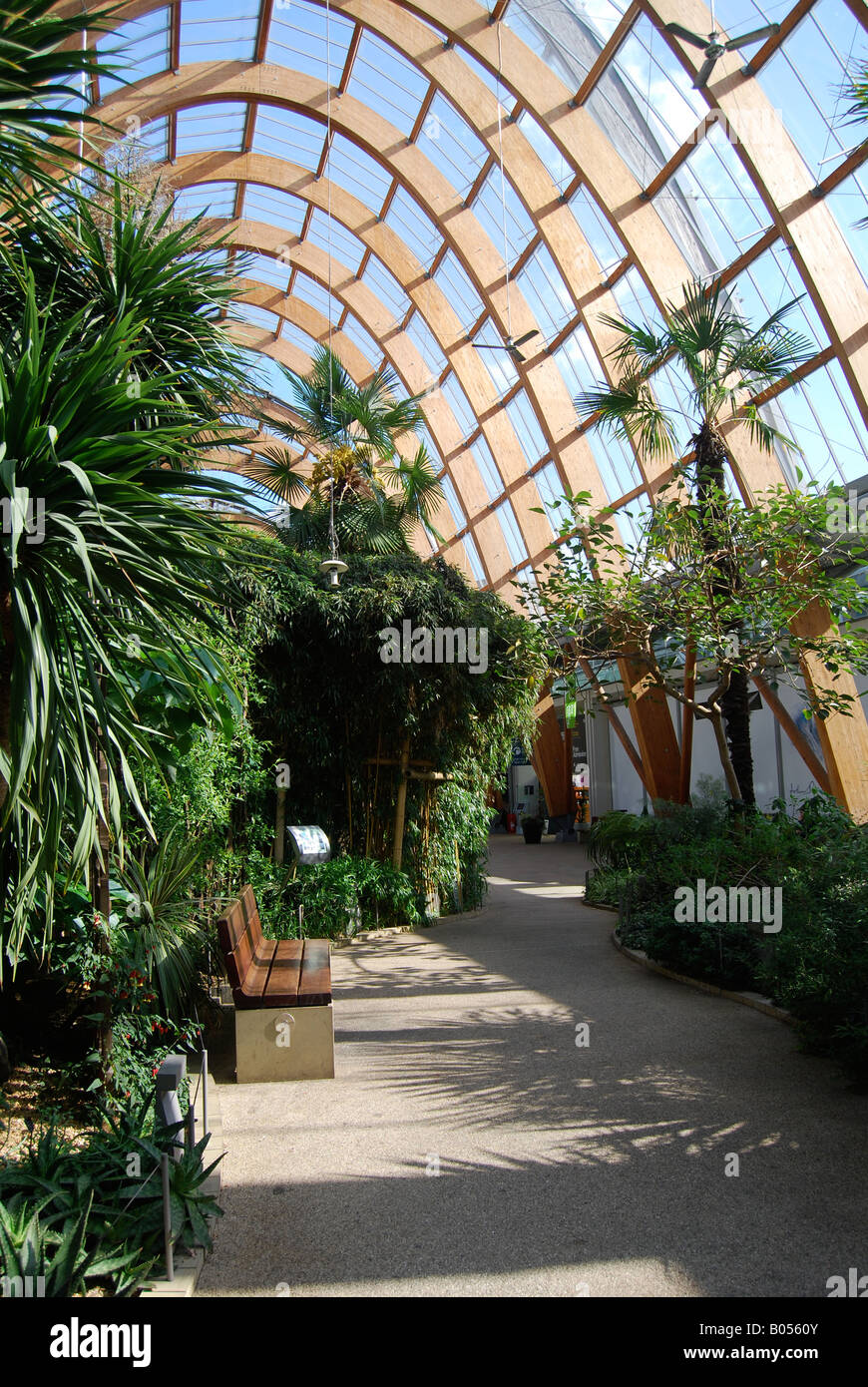architecture sheffield winter gardens wooden building public art
