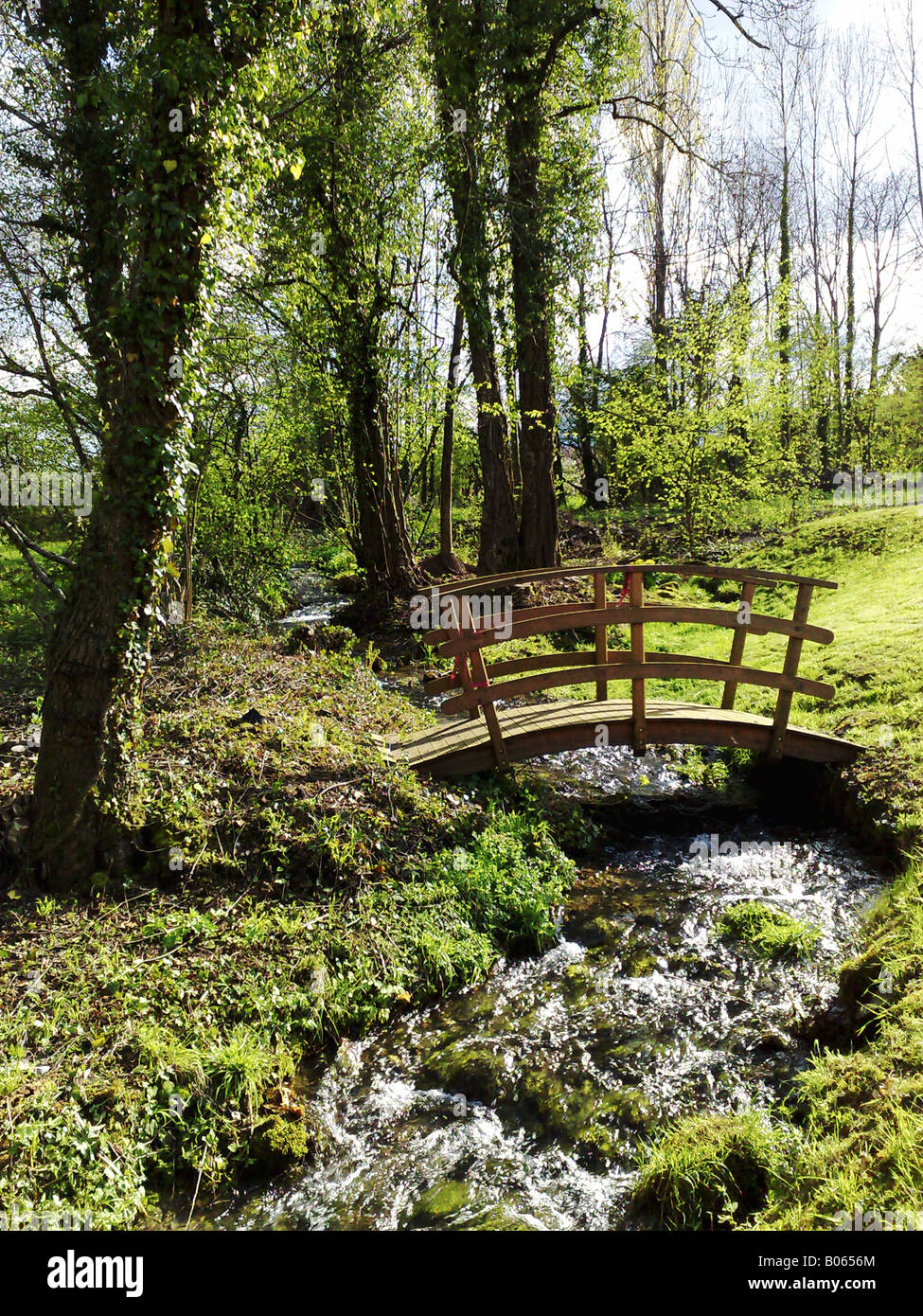 A Wooden Bridge Over A Stream In The Woods Tranquility