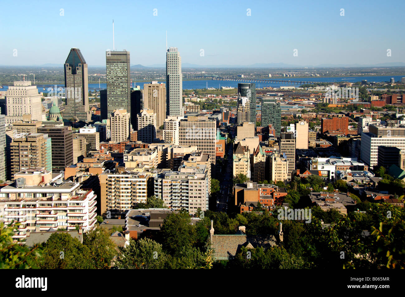how to buy stock montreal