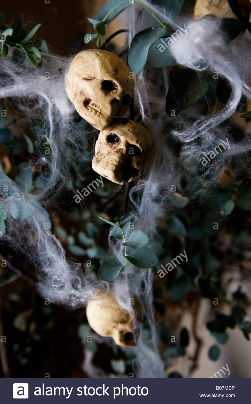 halloween decorations skulls and cobwebs