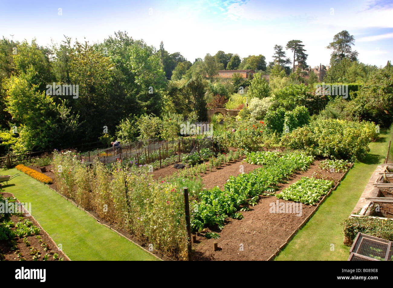 A Victorian Walled Vegetable Garden In A West Of England