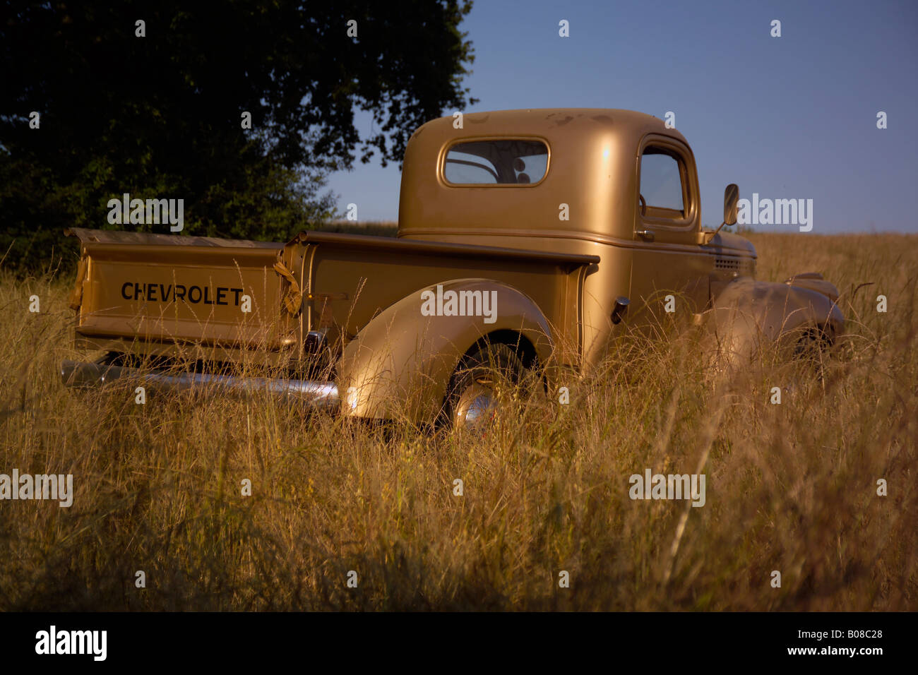 Old American vintage Chevrolet pick-up truck in a field with blue ...