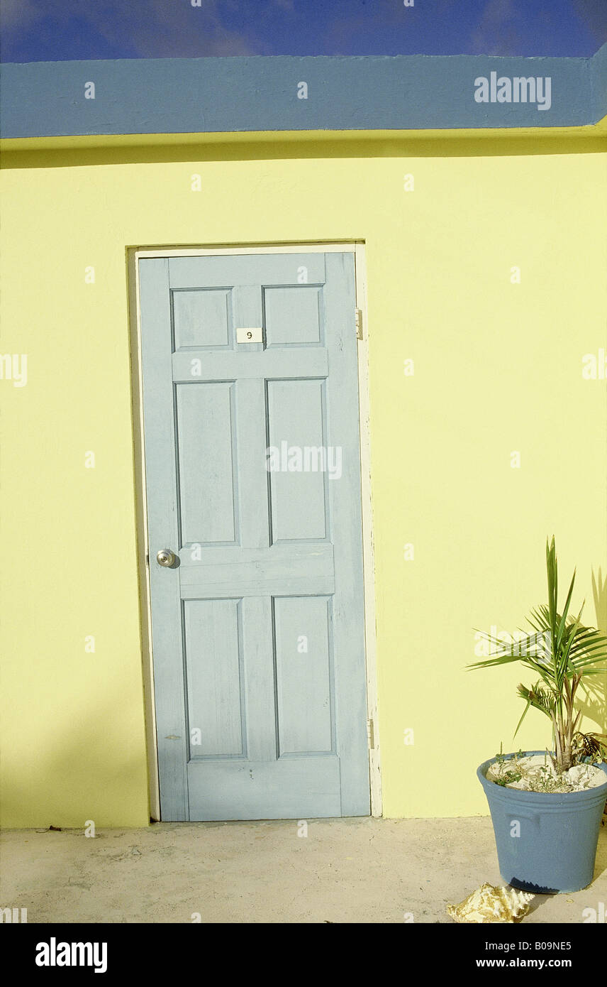 Blue door Yellow wall Palm in pot Shell Coral Sands Hotel Room No9 HARBOUR ISLAND BAHAMAS & Blue door Yellow wall Palm in pot Shell Coral Sands Hotel Room No9 ... pezcame.com
