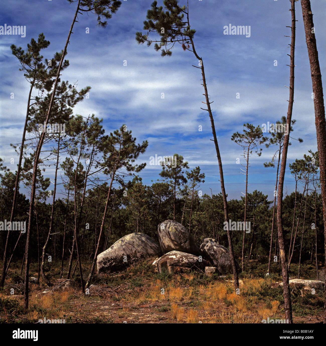 Charming Rocks In Spanish Part - 8: Stock Photo - Rocks U0026 Trees In Spanish Landscape