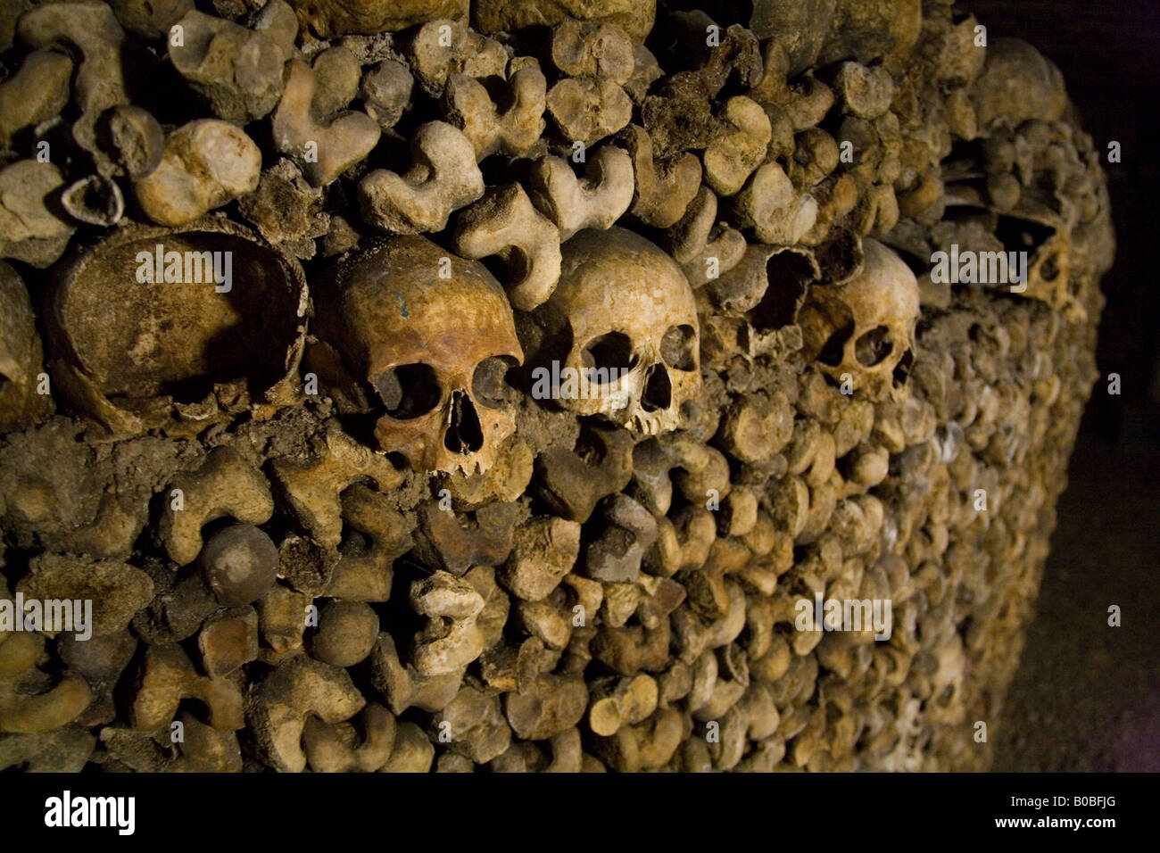 Human Skulls And Bones Stacked In Rows In The Underground Catacombs ...