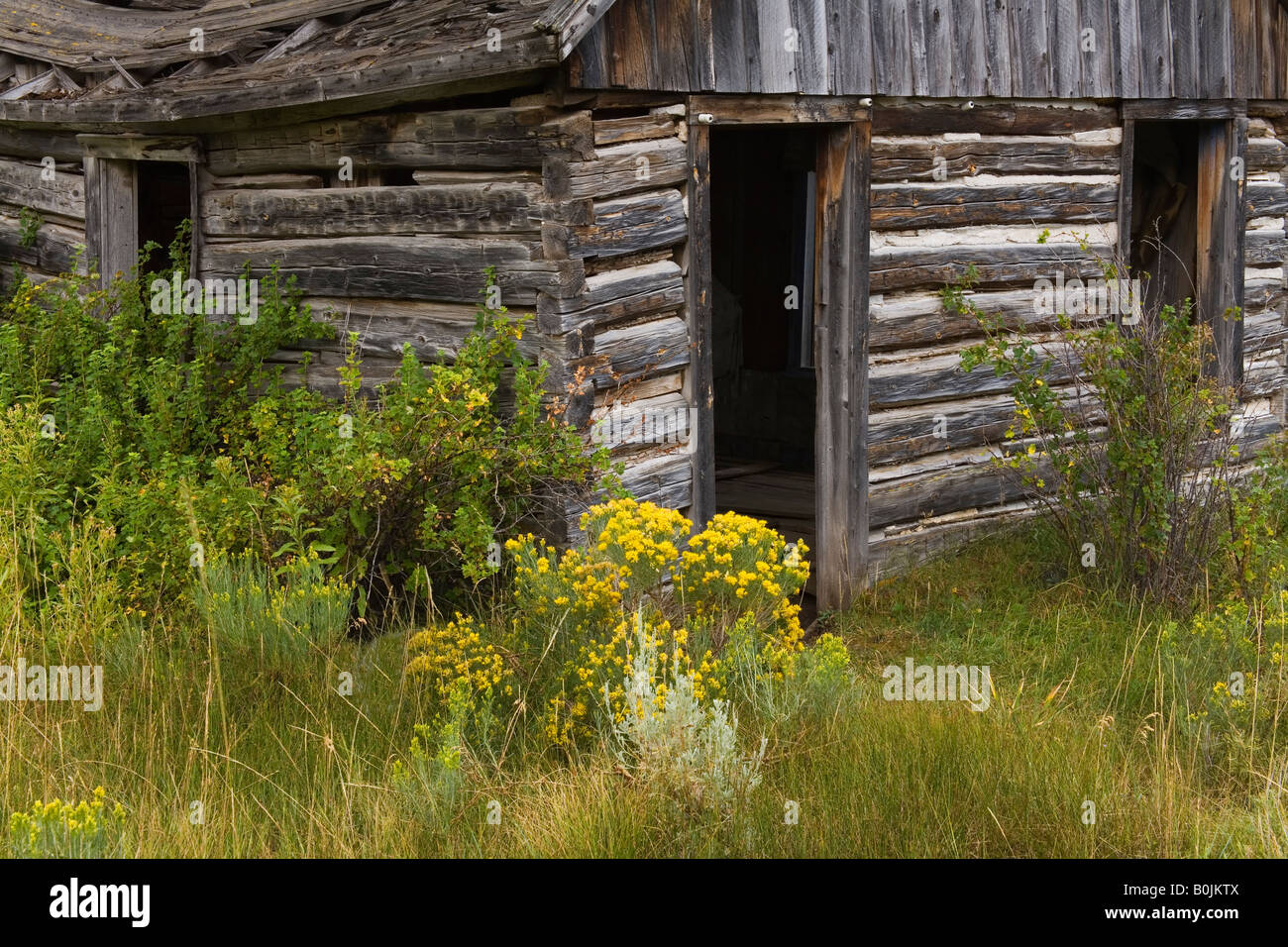 Elkhorn Ghost Town State Park Boulder Helena Region Montana Usa Stock Photo Royalty Free Image