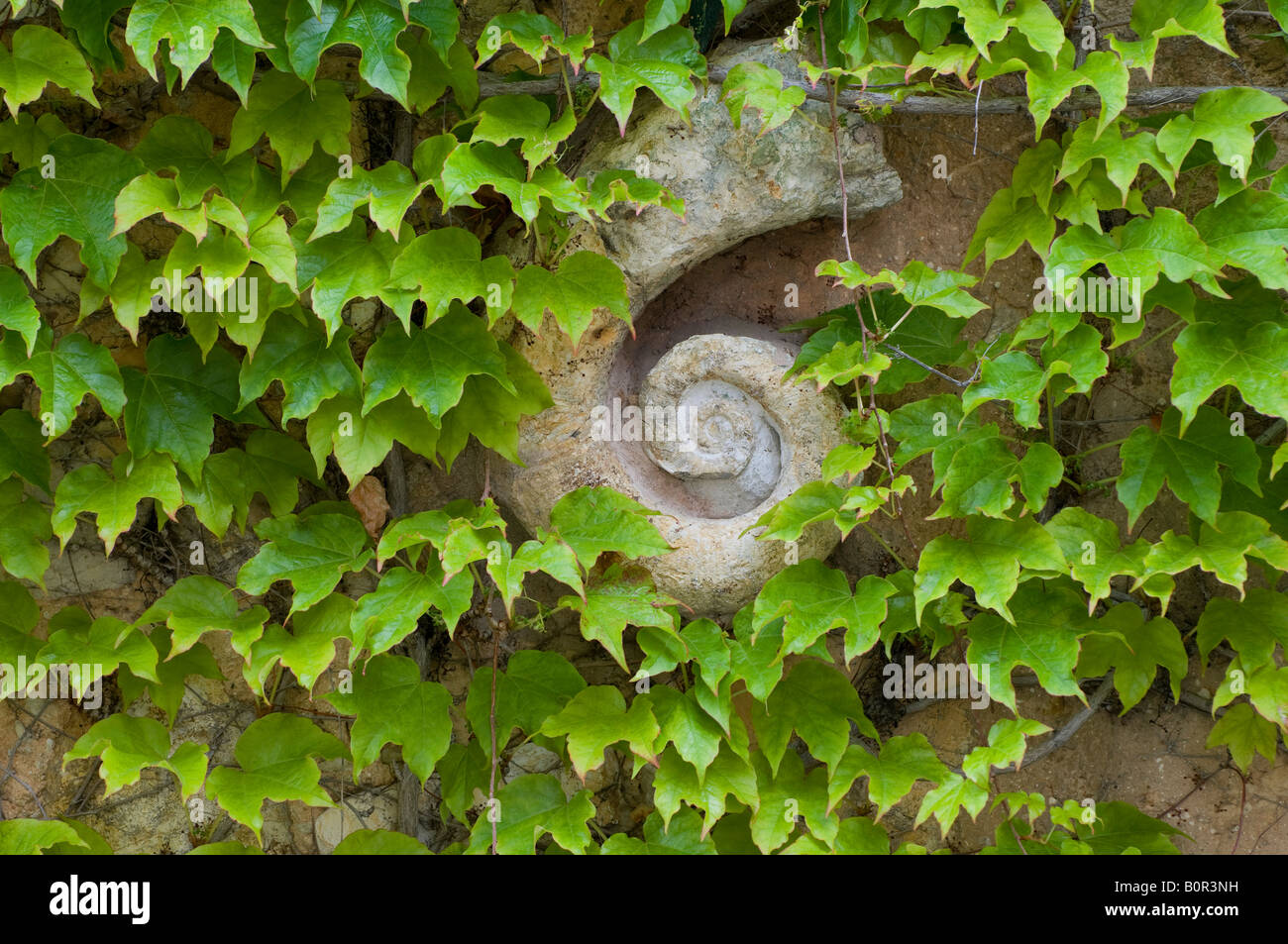 garden wall decoration, provence, france Stock Photo, Royalty Free ...