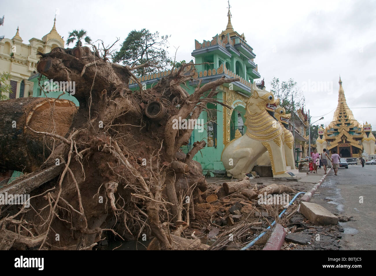 nargis cyclone Posts about cyclone nargis in burma immediately following cyclone nargis in response to the cyclone—a storm that killed an estimated.