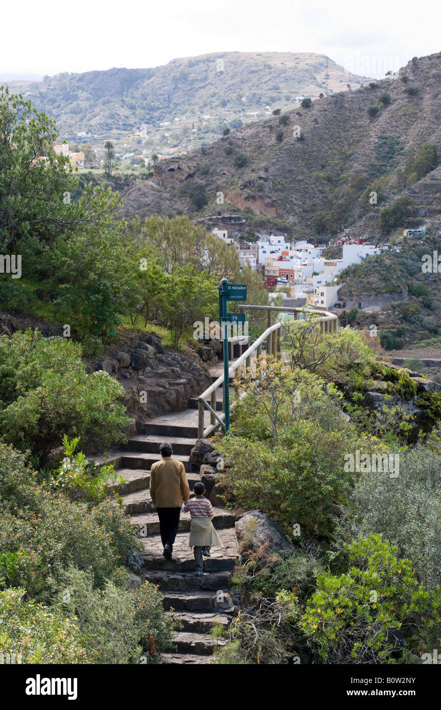 Gran canaria the national botanical gardens jardin for Jardin canario