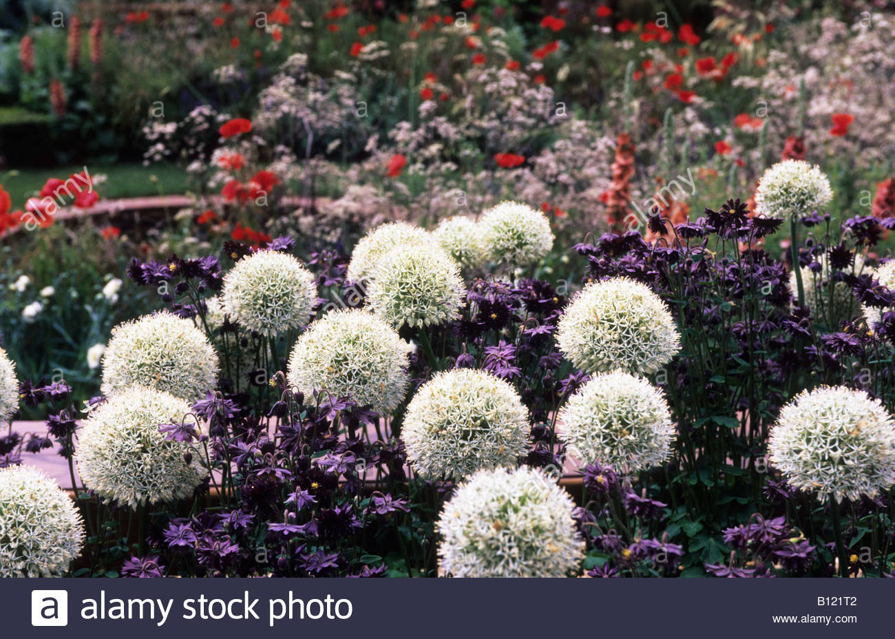 how to create a cottage garden border