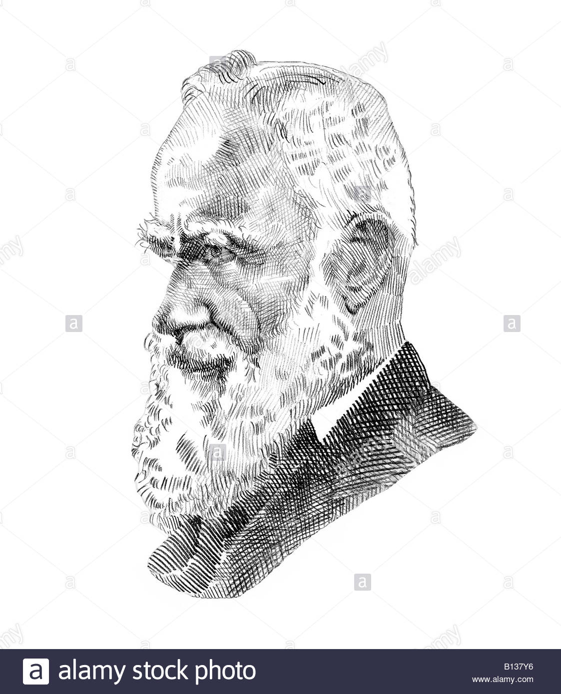 george bernard shaw portrait stock photos george bernard shaw george bernard shaw 1856 1950 irish critic playwright cross hatch style modern illustration stock image