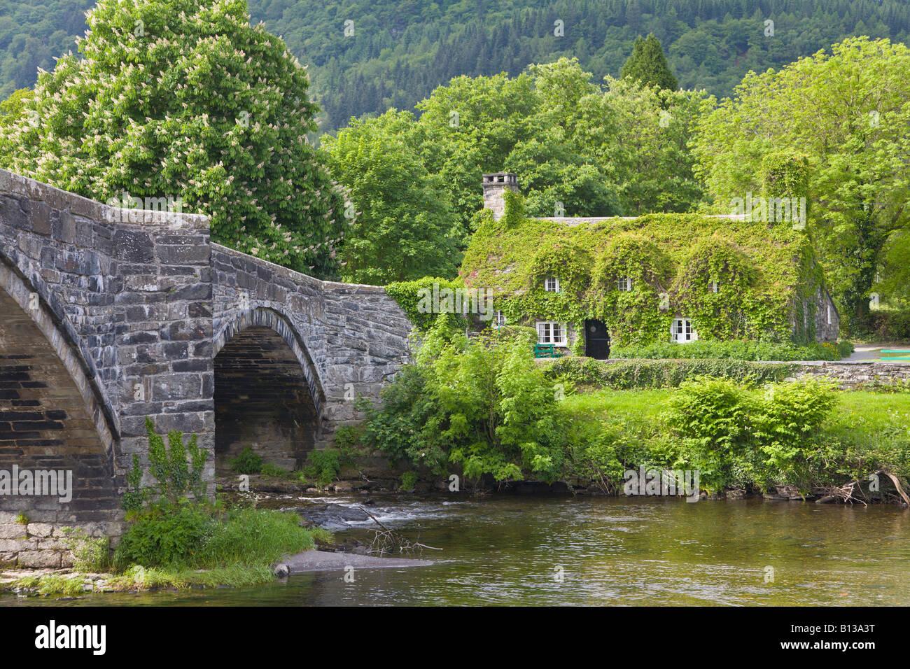 Ivy Covered Cottage And Inigo Jones Bridge Llanrwst Conwy North Stock Photo Royalty Free