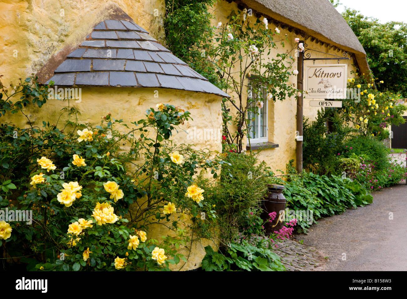 Bossington Tea Rooms