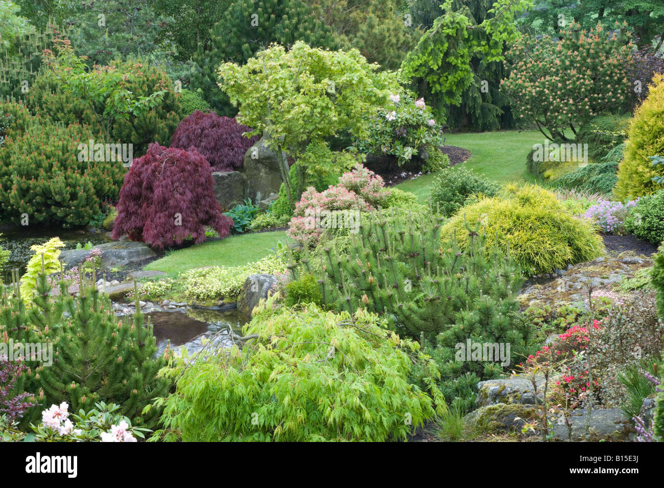 Garden Pond In Rock Garden Design By Bahaa Seedhom North Yorkshire England  May