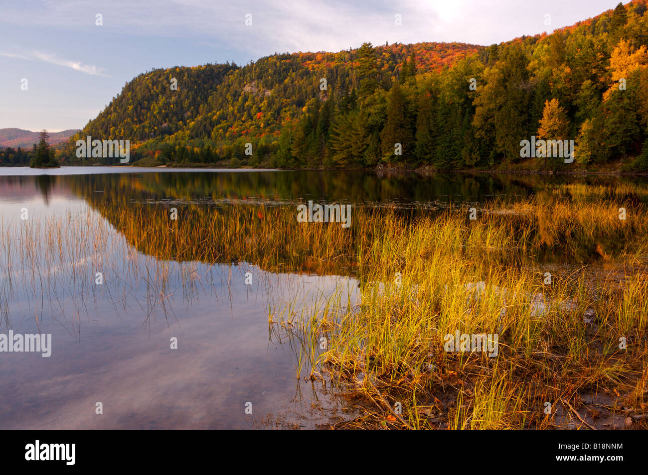 Lac monroe in parc national du mont tremblant a for Lac miroir mont tremblant