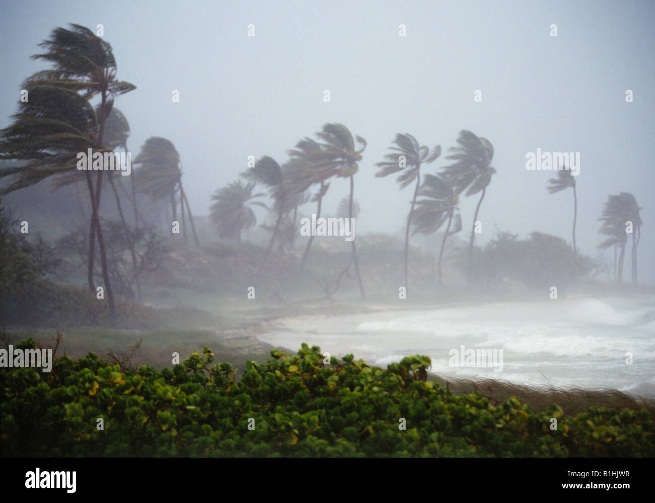 """project on wind storm and cyclone Goes image from noaa a severe winter storm, or """"bomb cyclone"""" is creating blizzard-like snow and wind conditions on the east coast of the united states the storm."""