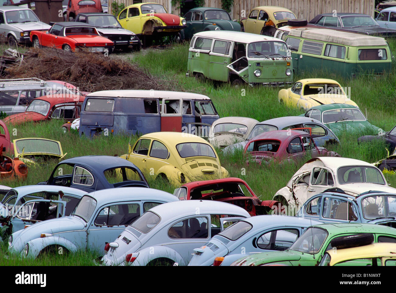 Volkswagen Junk Yard Stock Photo, Royalty Free Image