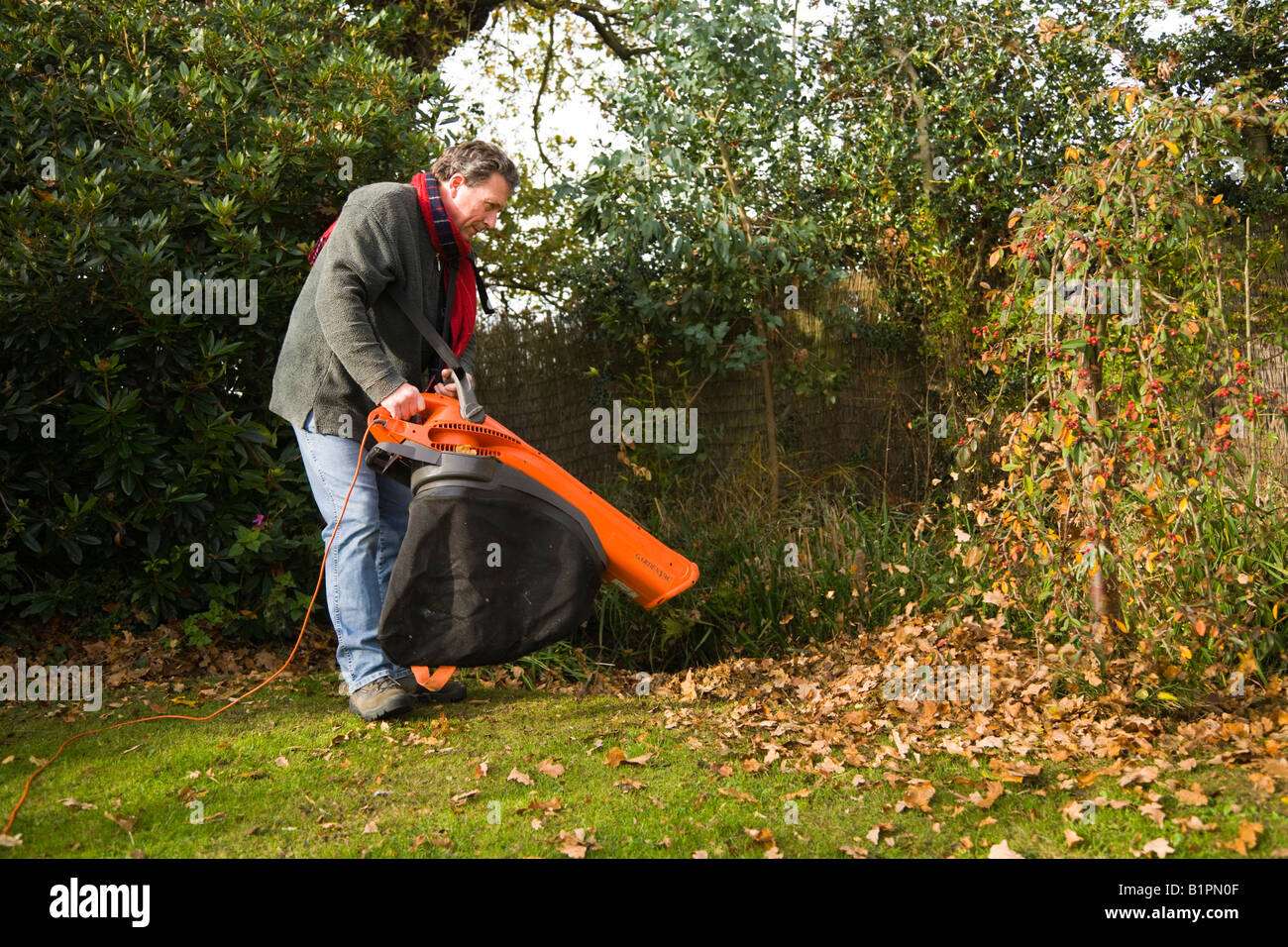 Leaf Blowing Man Using Combination Garden Vac And Leaf Blower To