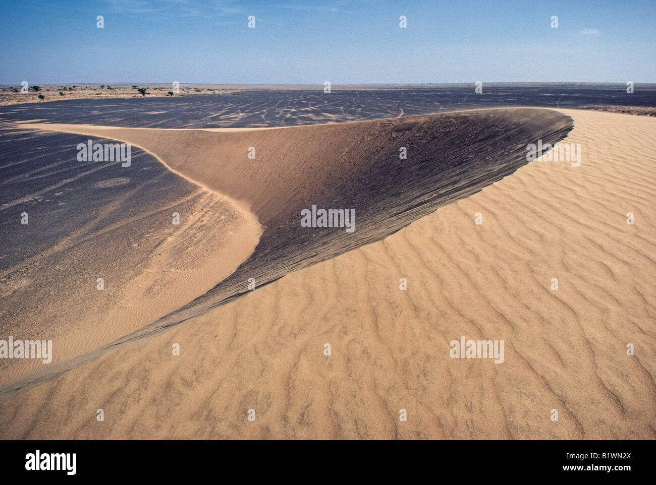 Barchan or crescent shaped transverse sand dunes in stony ...