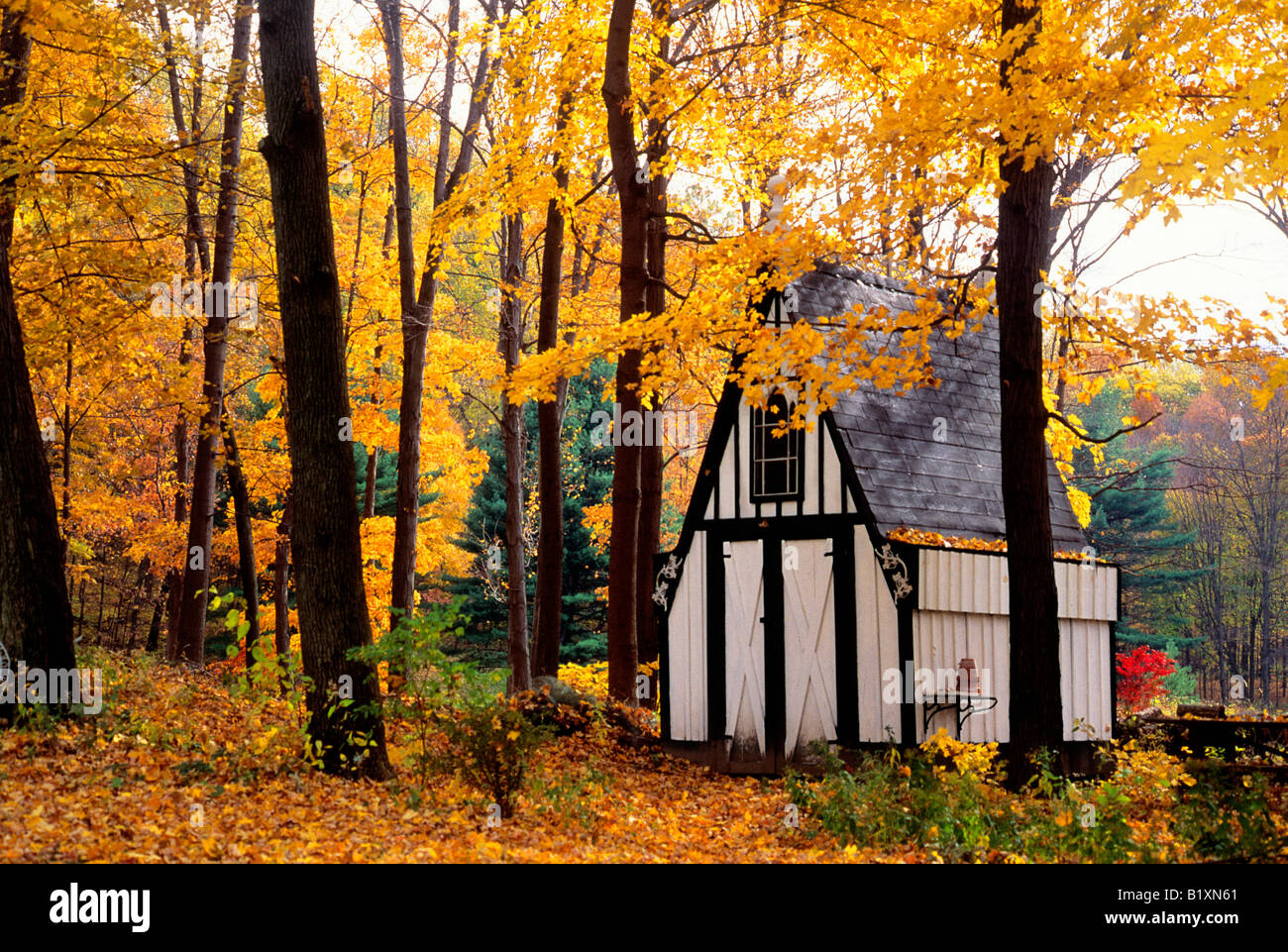 duchess county new york state autumn victorian garden shed house in the woods - Garden Sheds Ny