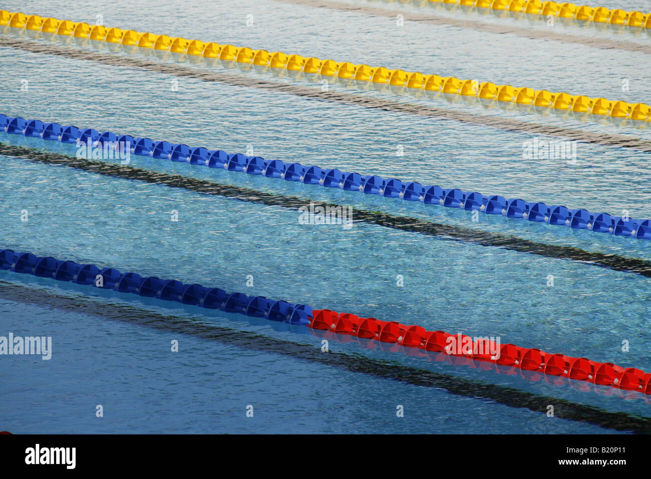 empty olympic size swimming pool with lanes
