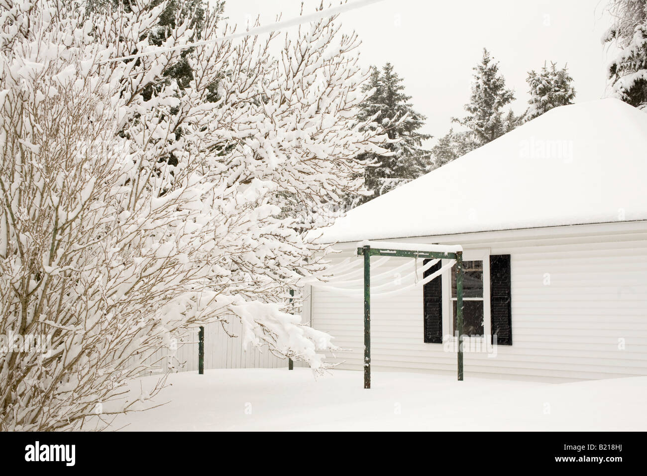 fresh snow covers the backyard clothesline and garage stock photo