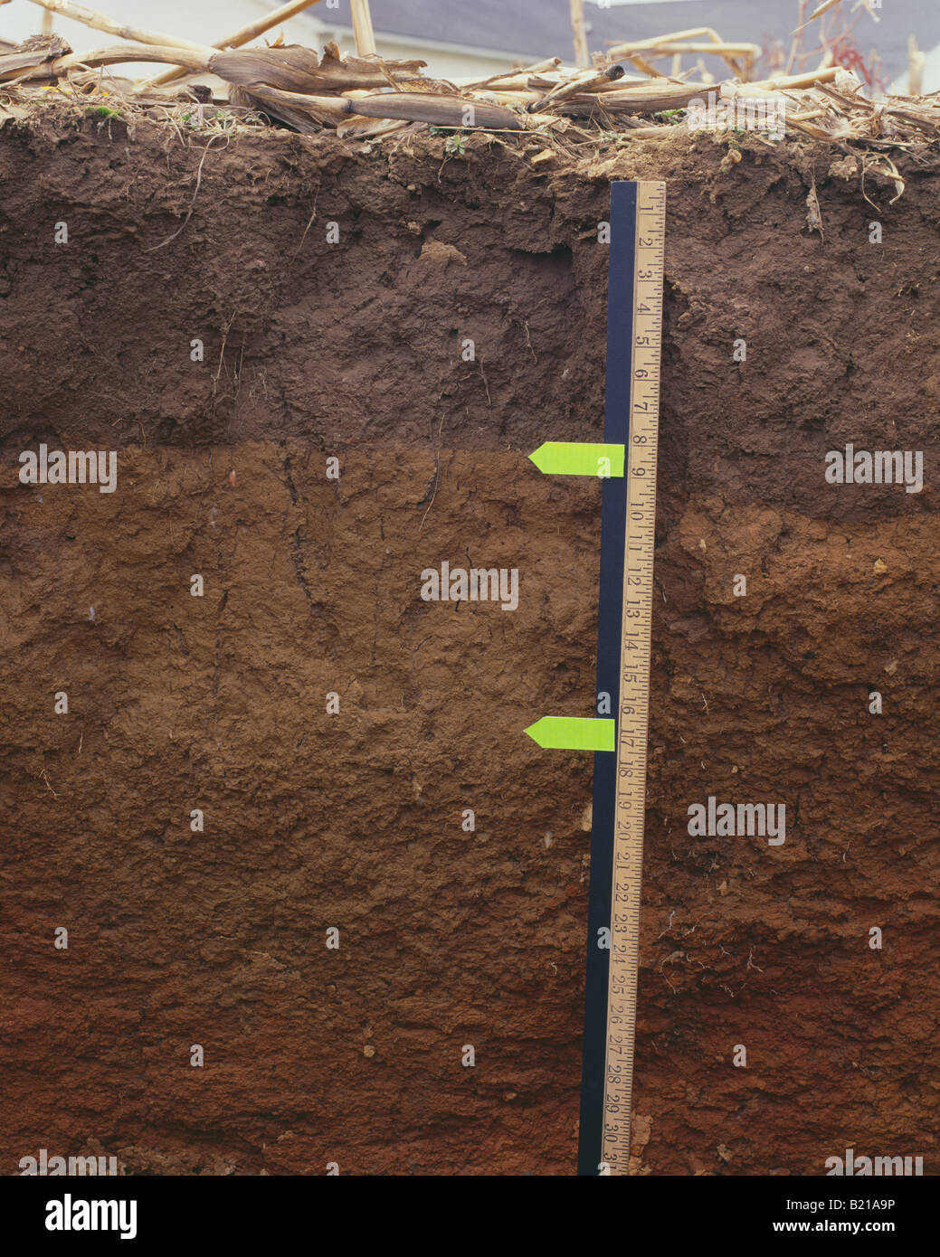 Soil profile monolith stock photo royalty free image for Soil king productions
