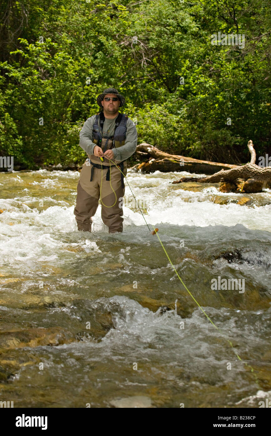 Man fly fishing along the rio hondo near taos new mexico for Fishing new mexico