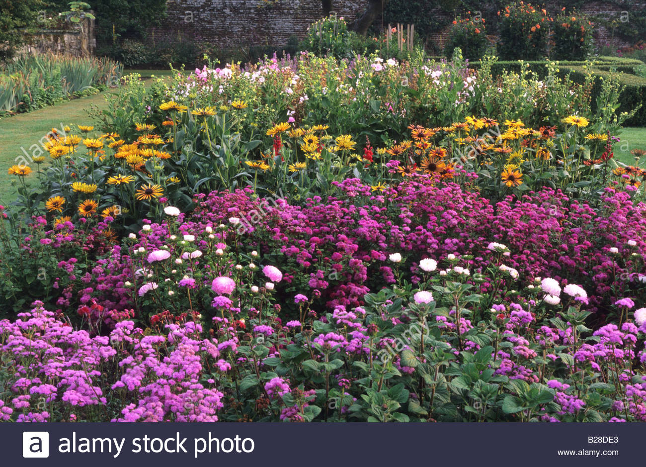 Walled Kitchen Garden Parham Sussex Annuals Cut Flower Borders In Walled Kitchen Garden