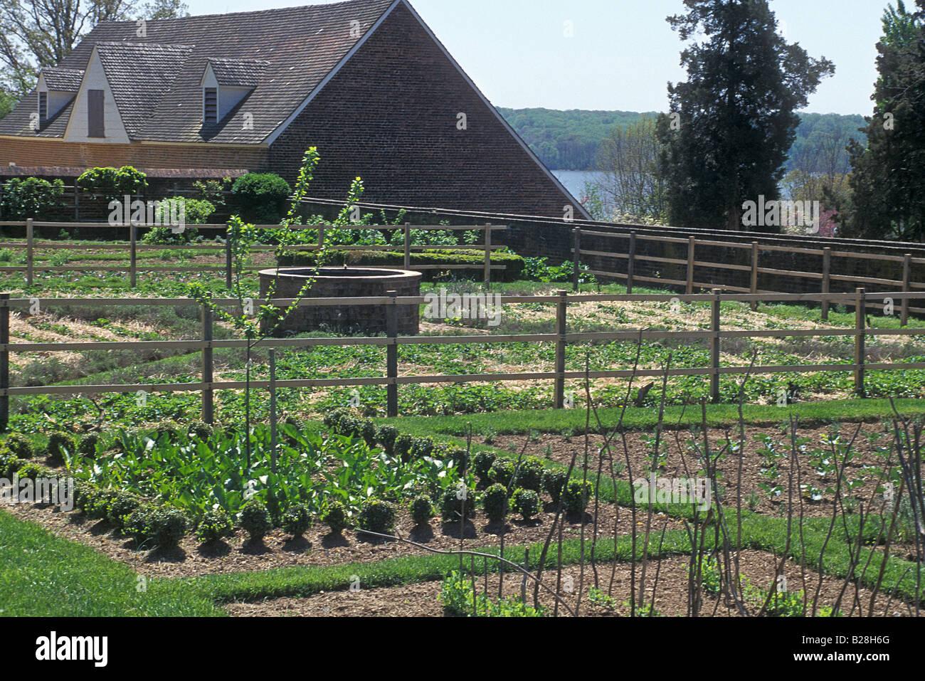 Vegetable Garden At Mount Vernon George Washington Home In
