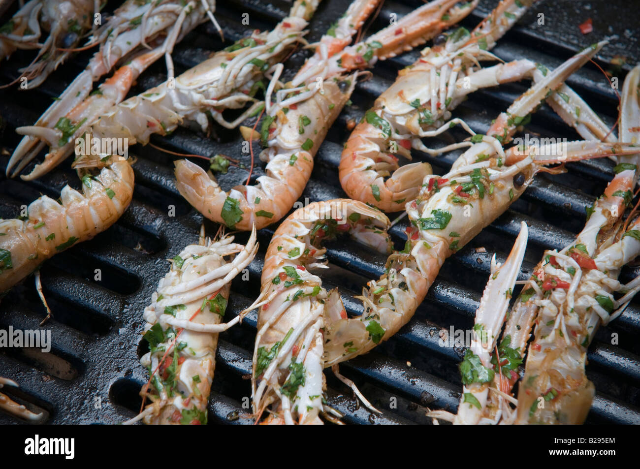 how to cook live langoustine