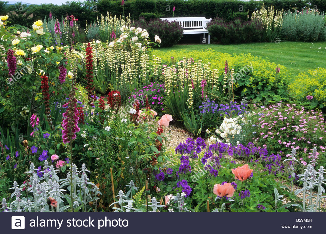 Sussex Country Cottage Garden In Summer Mixed Borders