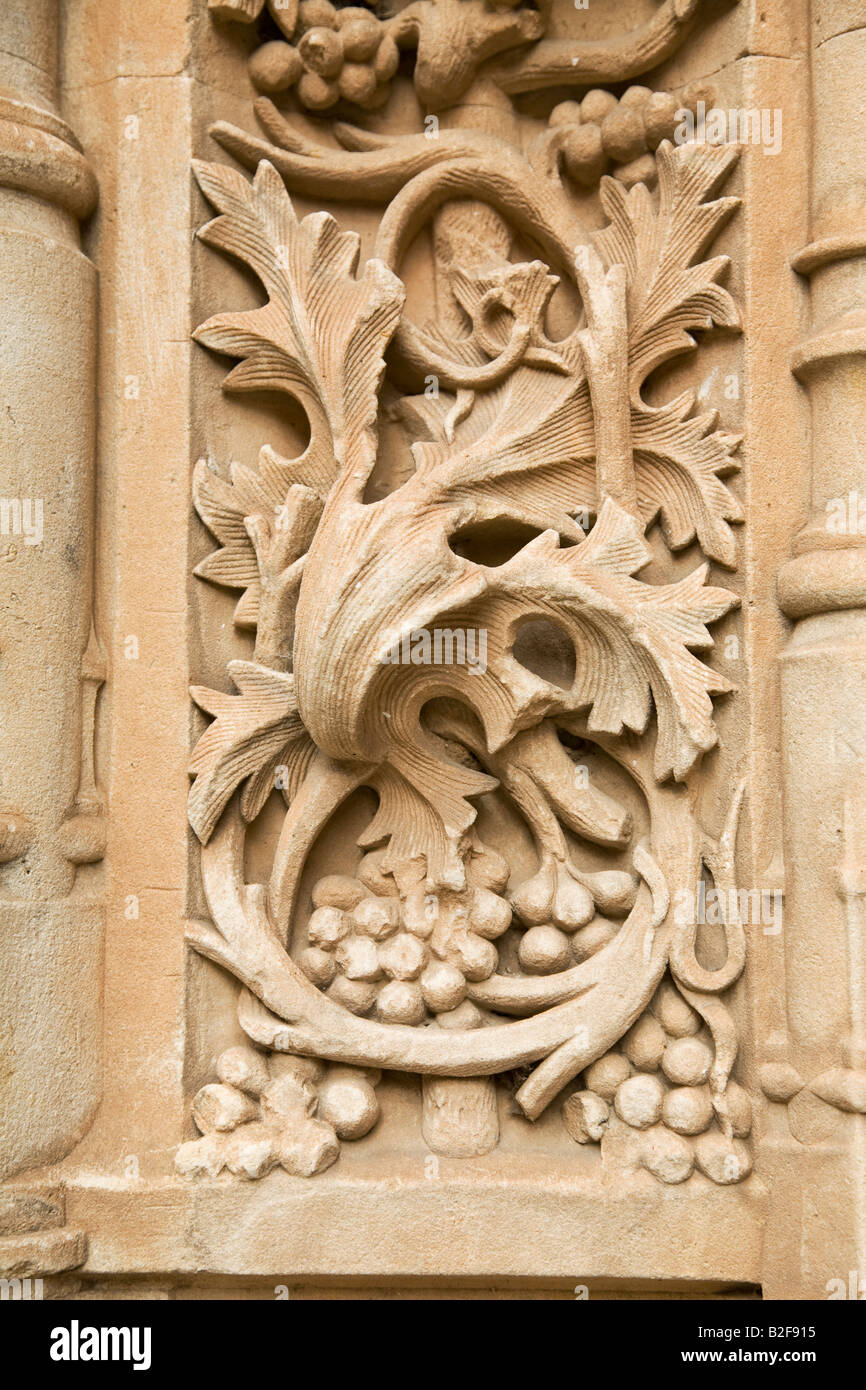 Spain salamanca detail of stone carving leaves vines