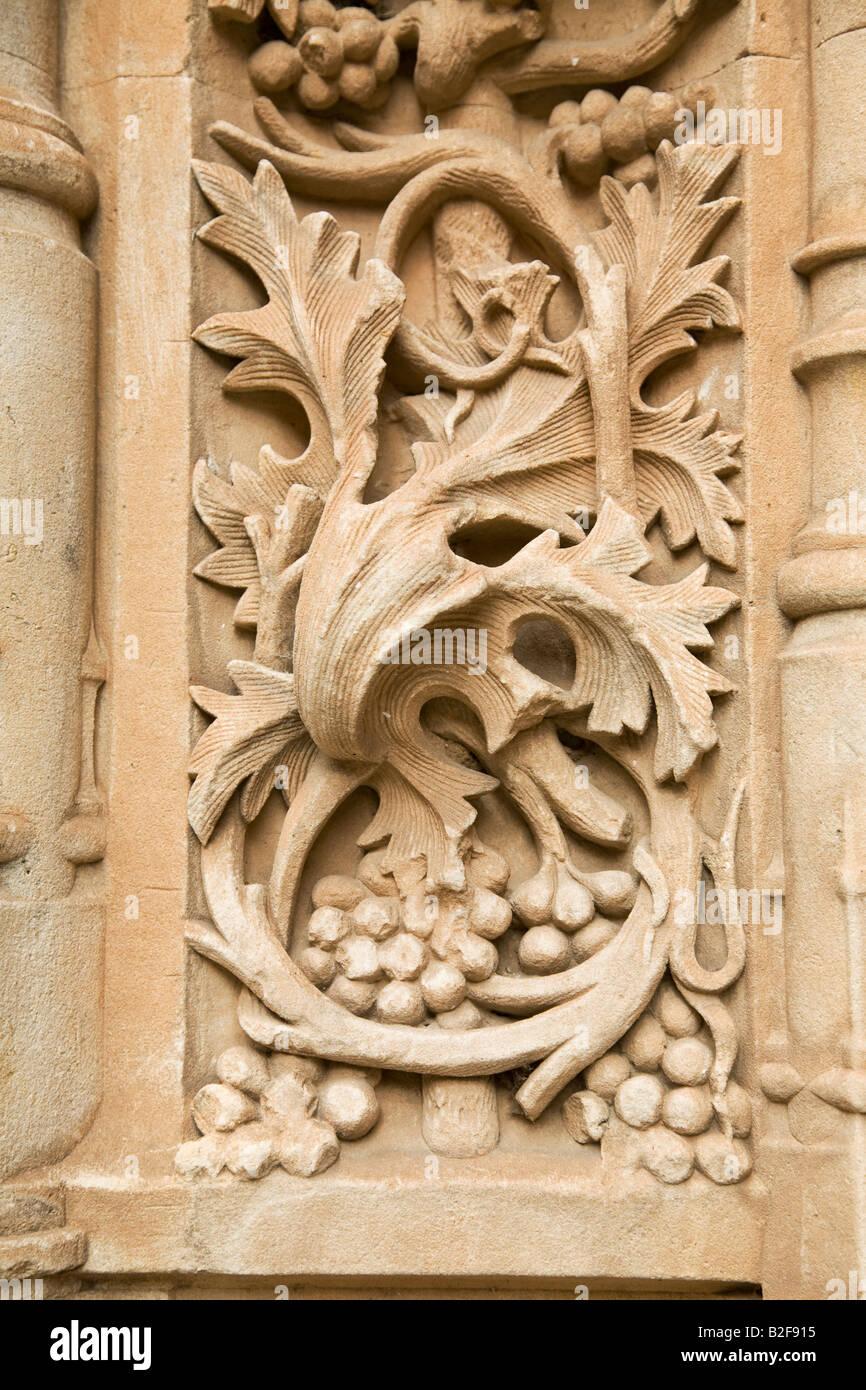 Spain salamanca detail of stone carving leaves vines