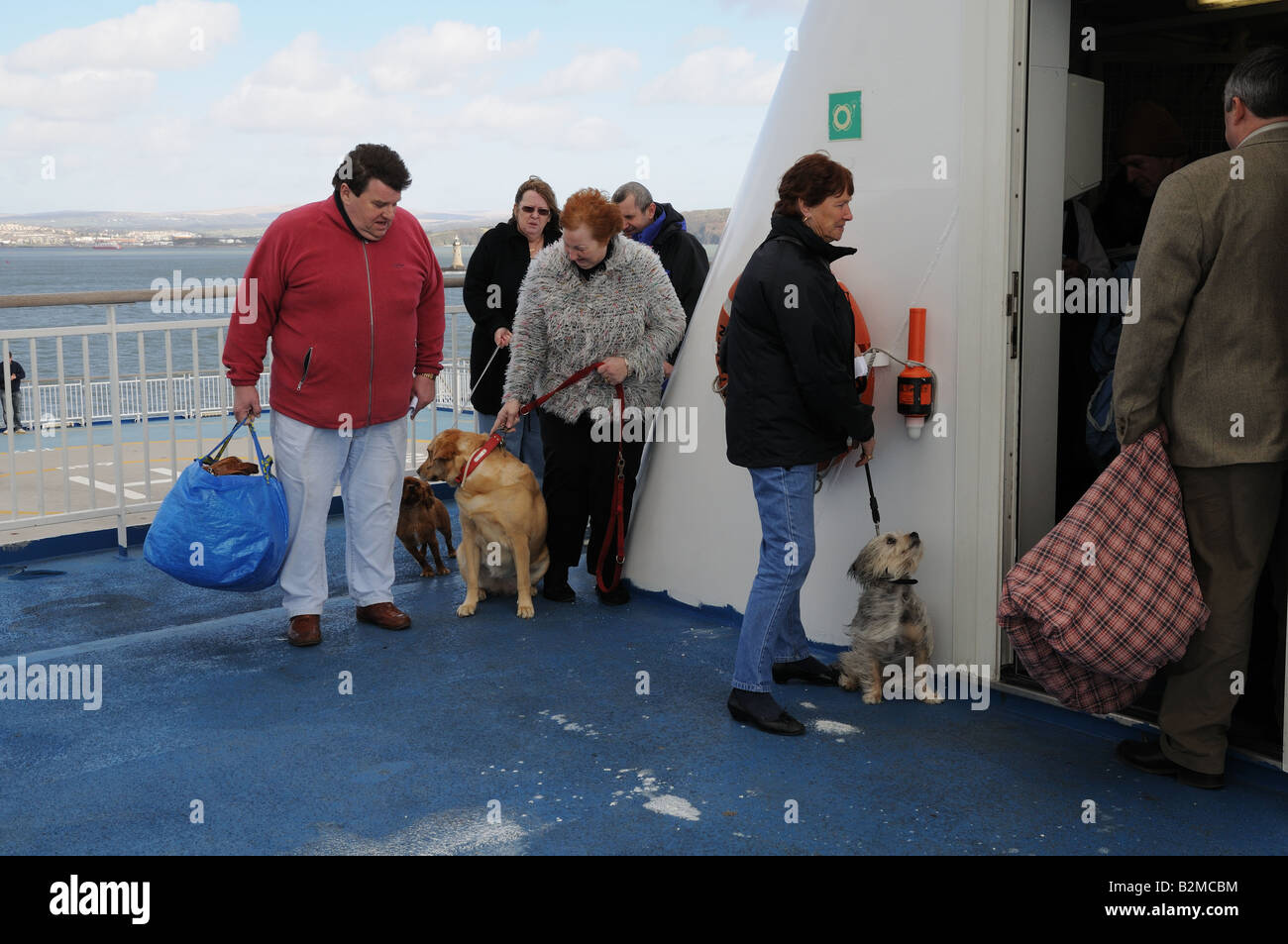 Passengers And Their Dogs Queuing For The Dog Kennel Cabin