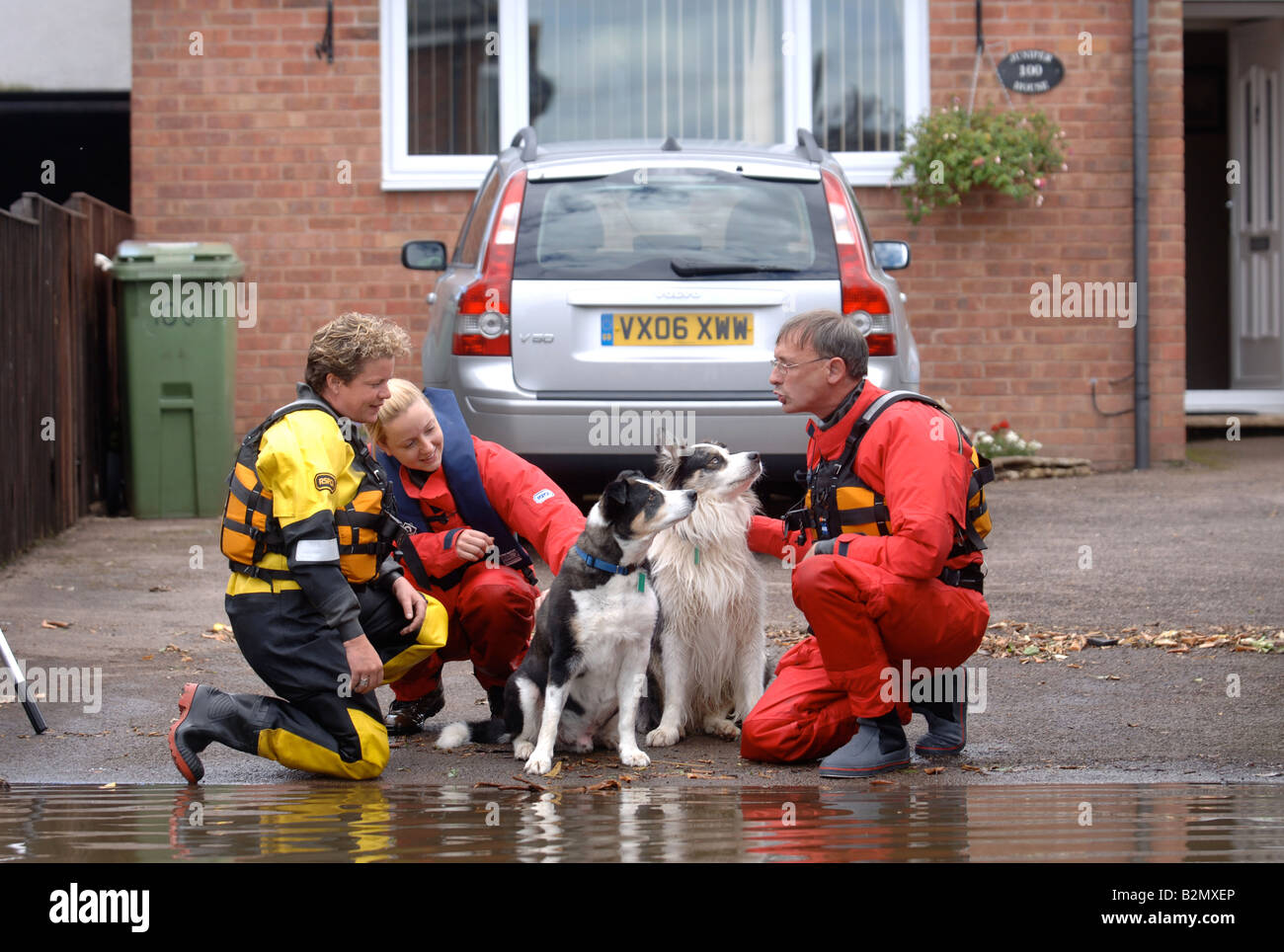 an rspca flood rescue team check on the welfare of animals where
