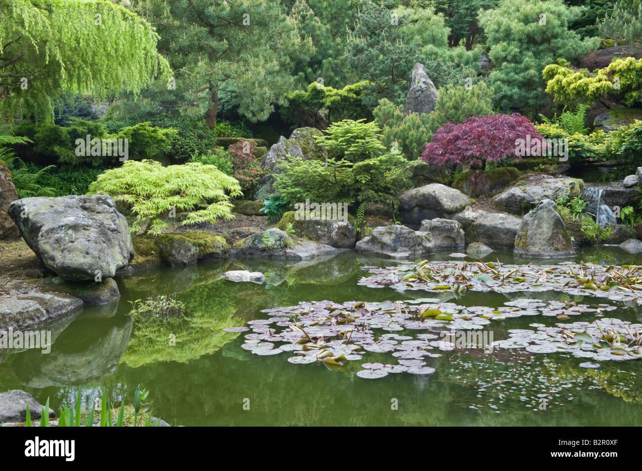 Garden Design Yorkshire garden pond with rocks, water lilies and trees in garden design