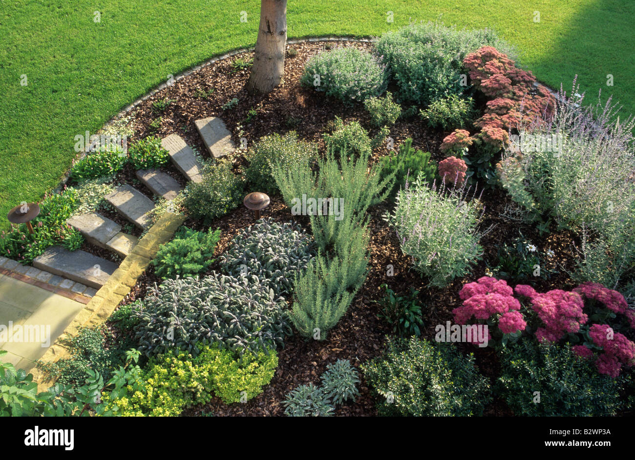 Low maintenance garden border stock photo 19005822 alamy for Low maintenance border shrubs
