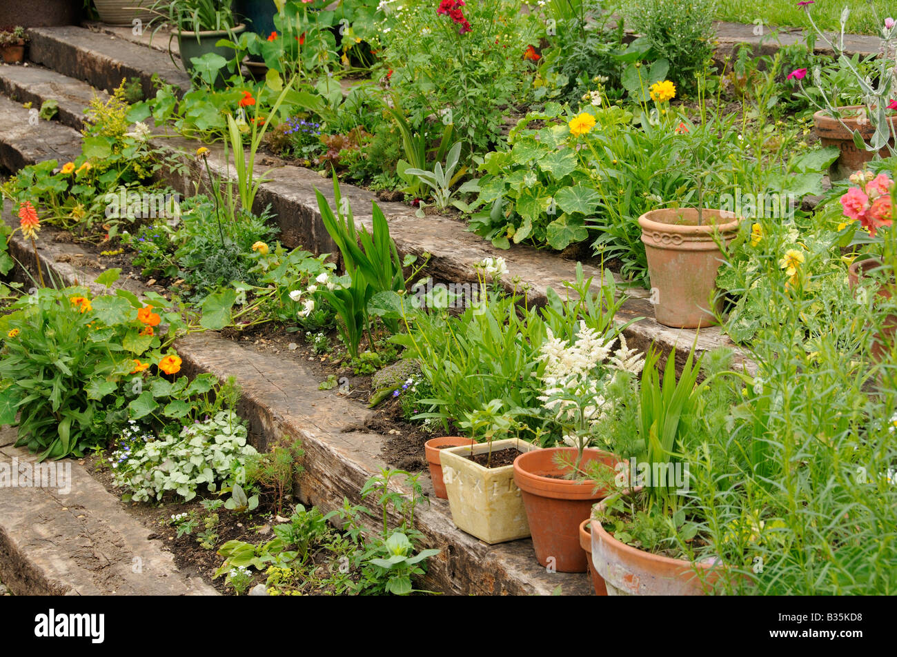 Garden wooden sleeper terrace and steps planted up with annuals – Steps to Planting a Garden