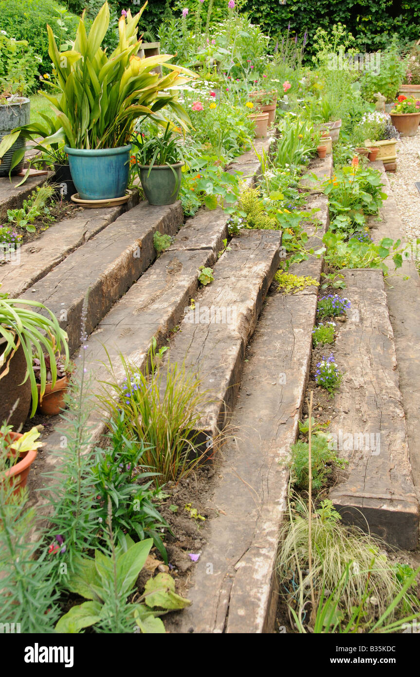 Garden wooden sleeper terrace and steps planted up with for Terrace garden plants