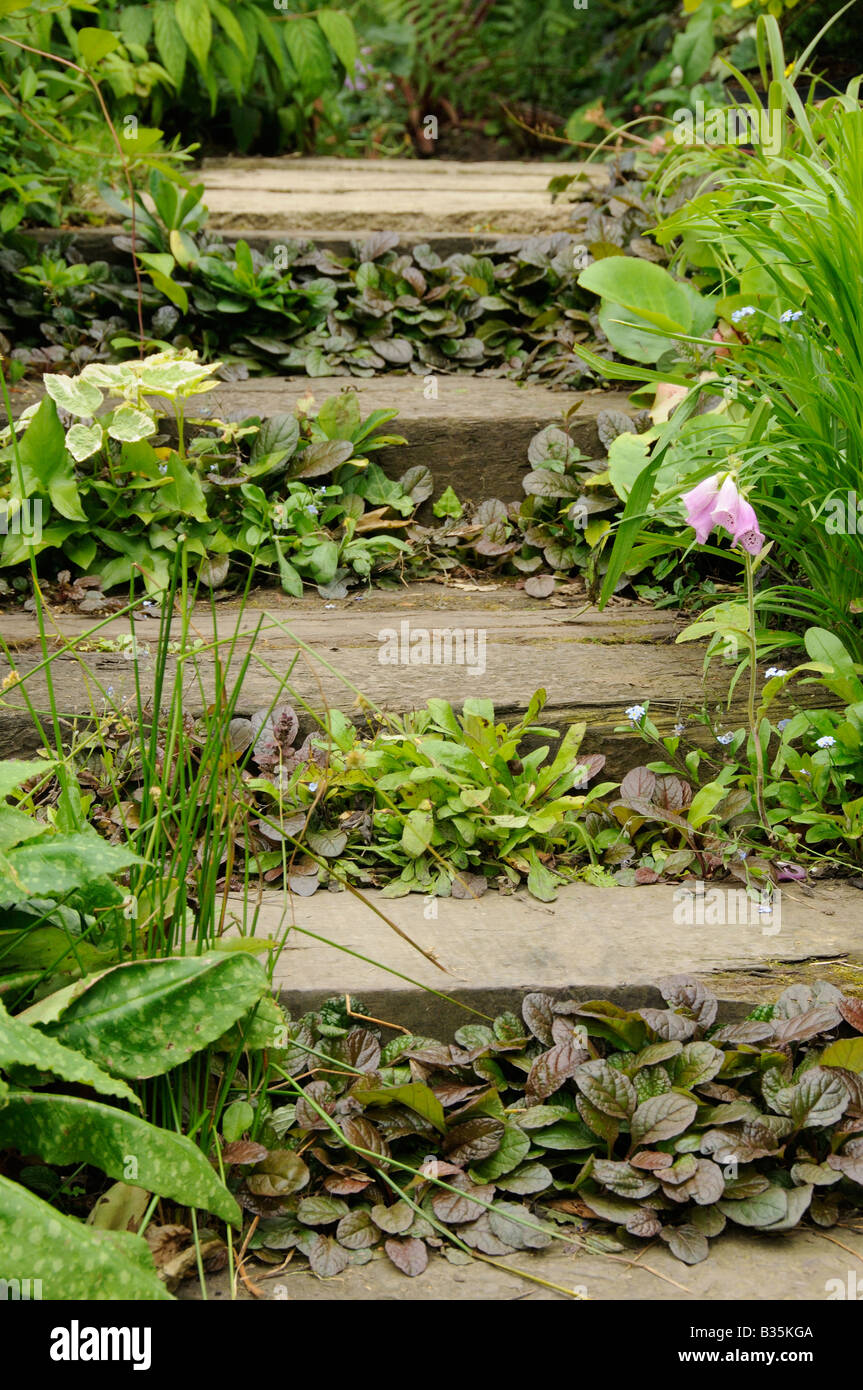 Garden Railway Sleeper Steps Planted With Ground Cover Plants – Steps to Planting a Garden