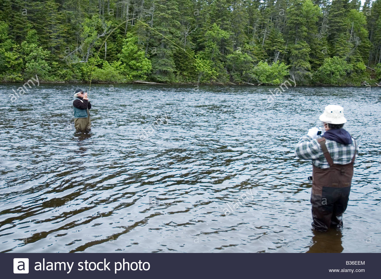 Fly fishing for atlantic salmon river of ponds for Stocked fishing ponds