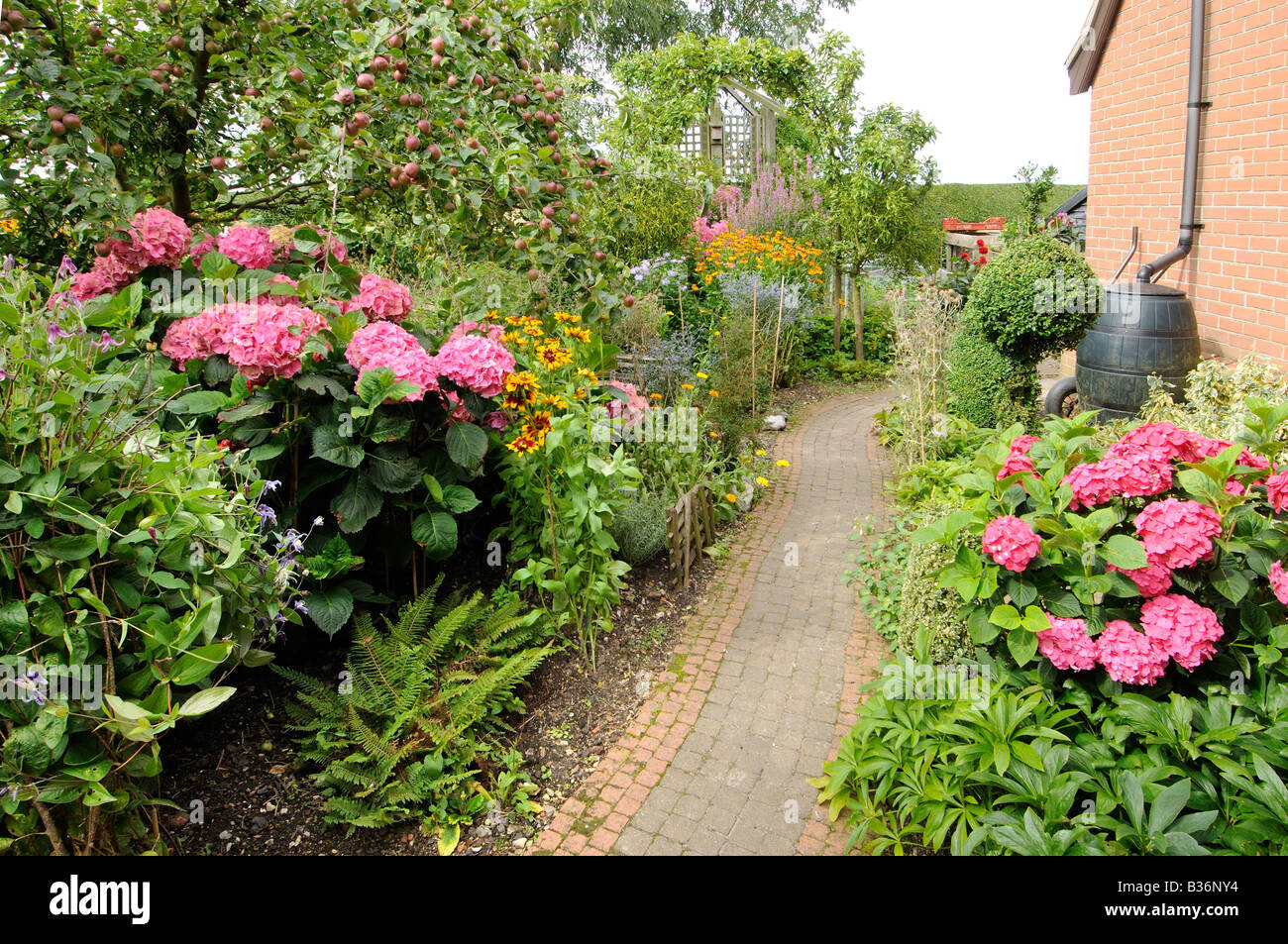 Rustic garden path in summer with herbaceous flowers and shrubs stock photo royalty free image - Rustic flower gardens ...